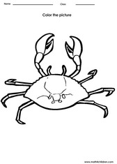 coloring crab activity for kids