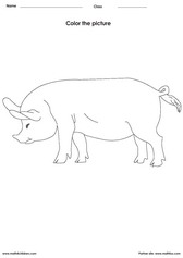 Coloring a pig activities for children - PDF