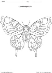 coloring a butterfly activity for children - PDF printable worksheet