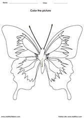 coloring a butterfly activity for children - PDF printable worksheet 2